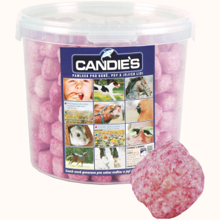 Candies Horse Baby kyblík 500 g